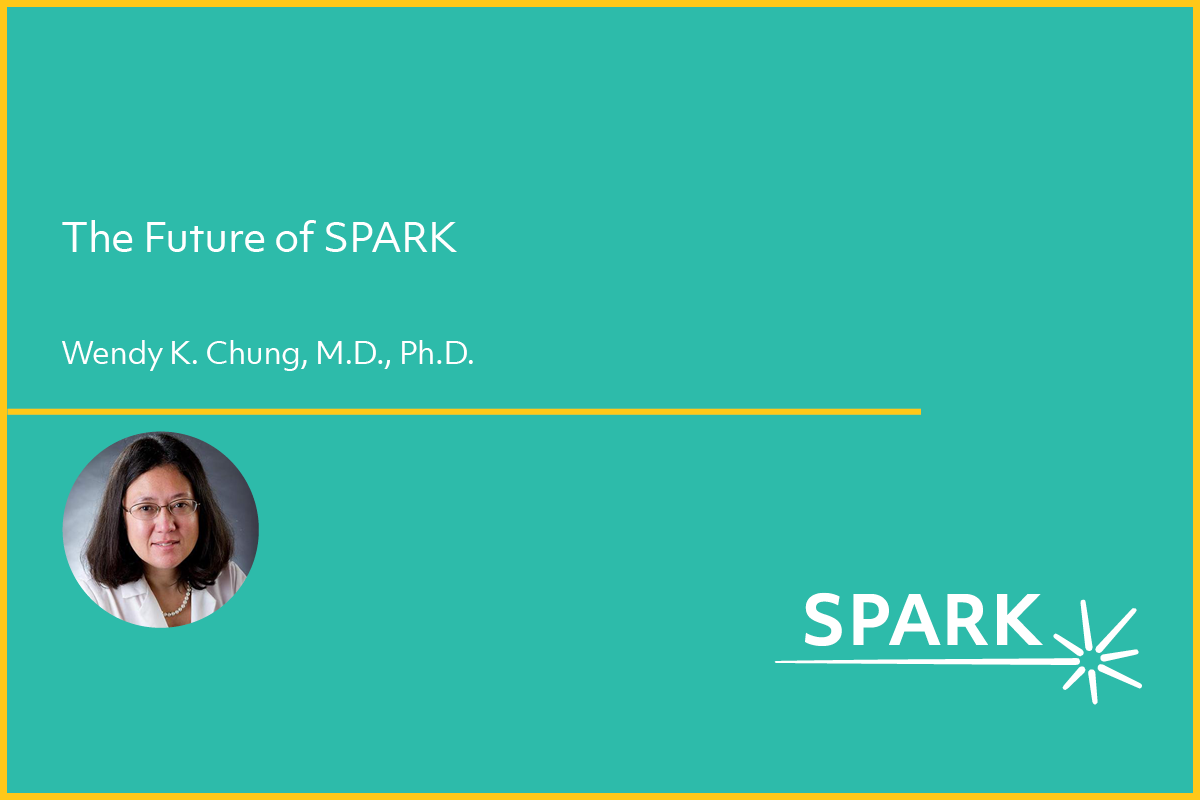 Webinar on the future of SPARK
