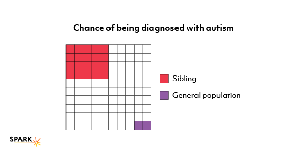 This illustration shows how children with an older brother or sister who has autism have a 10- to 20-fold greater chance of being  diagnosed with autism than the general population.