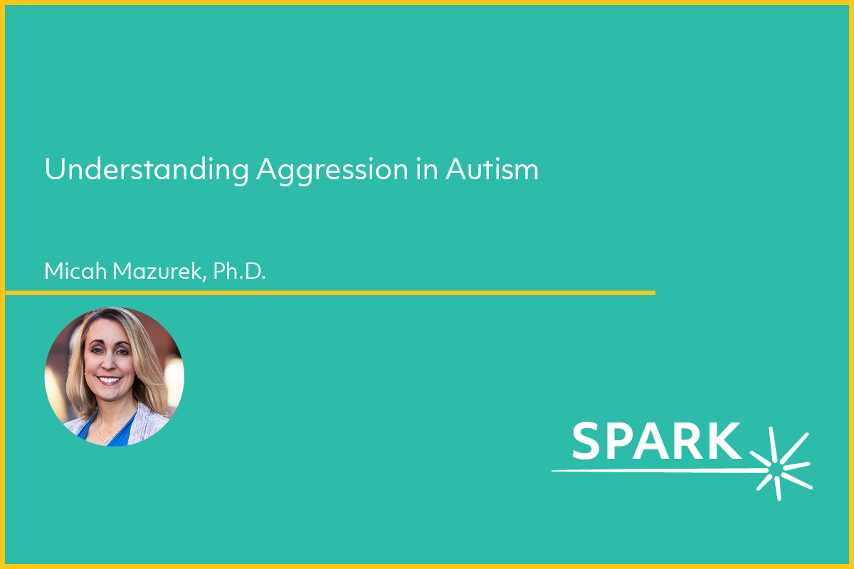 Image for webinar on aggression and autism